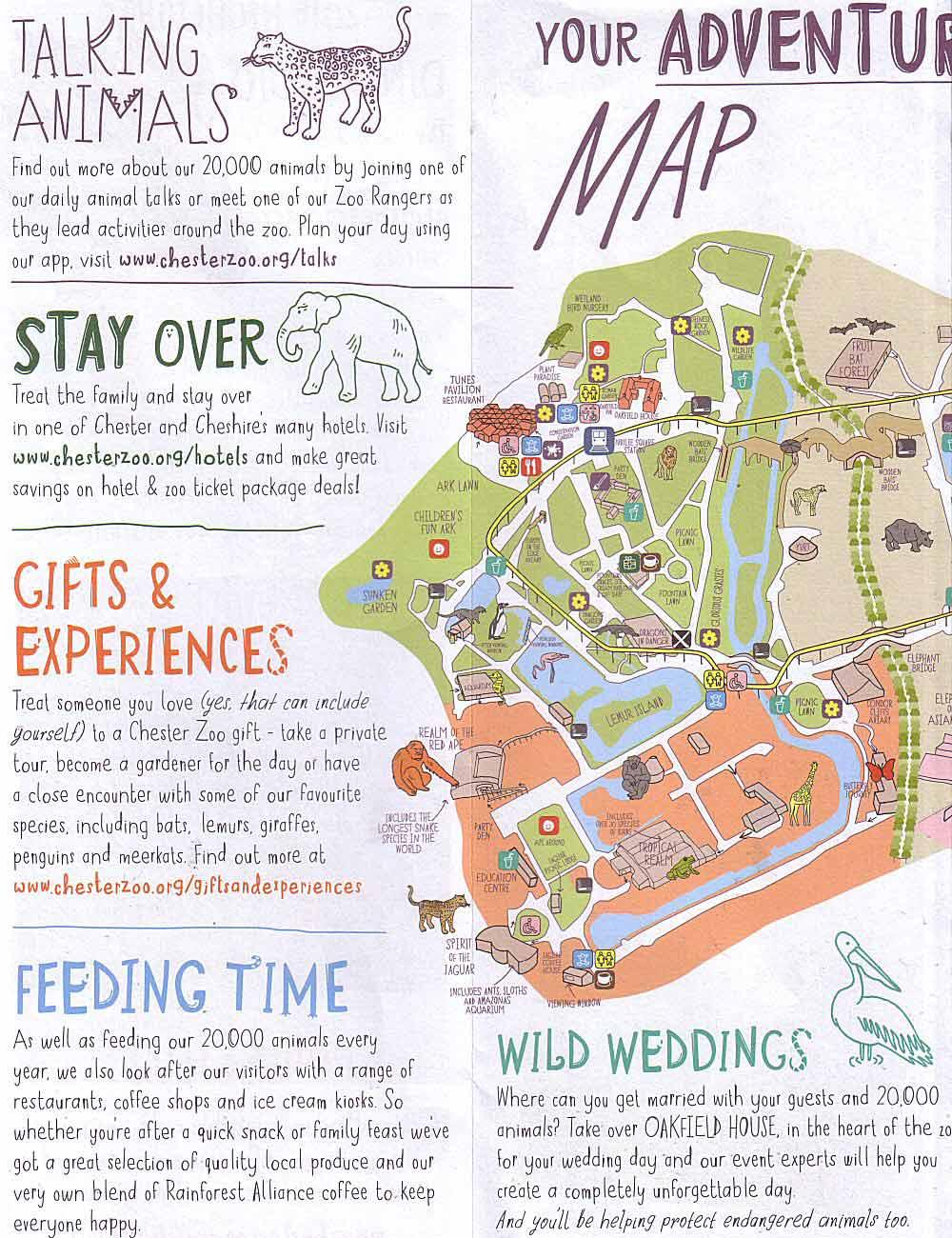 Chestertourist Chester Zoo 3
