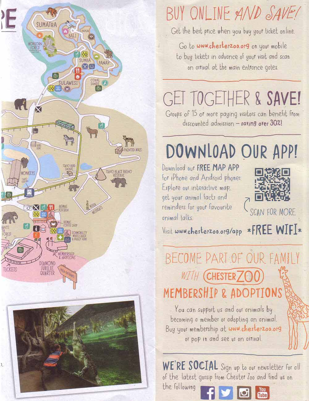 About Chester Zoo