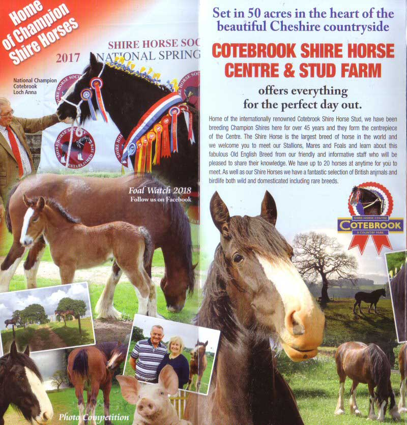 Cotebrook Shire Horse Centre 2